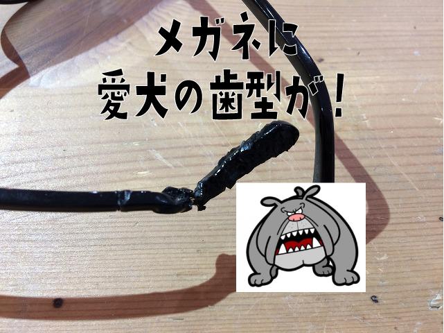 メガネが愛犬に噛まれて歯型が付いた!