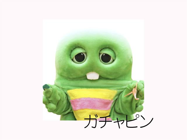 イエローグリーンの丸い可愛いサングラスviorou
